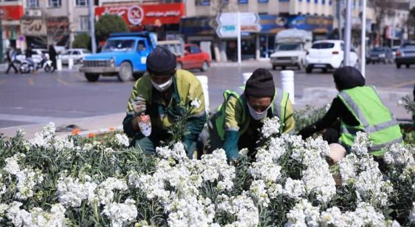 چهره بهاری شهر سمنان با کاشت 29 هزار گل