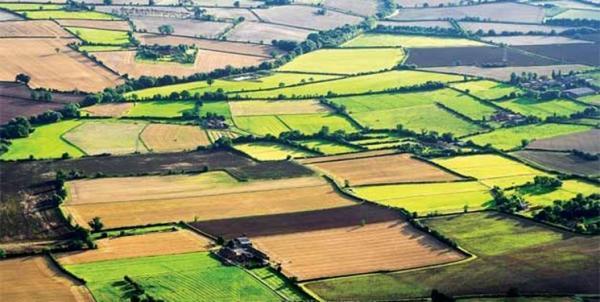 اجرای کاداستر اراضی کشاورزی از اولویت های سال 1400 است
